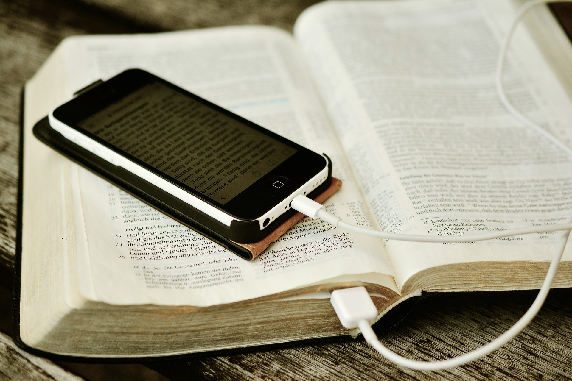 Texte für Print und Online